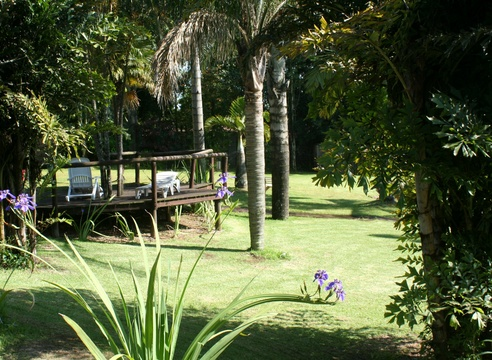Shaded Large Subtropical Gardens at  Nabana Lodge