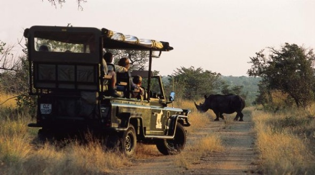 Encountering Rhino in the Kruger National Park - close to Nabana Lodge