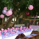 We cater for kid's parties and set-up to your requirements