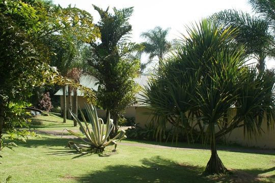 Palm Paradis at Nabana Lodge