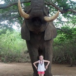 Young girl's close encounter with elephant in Hazyview